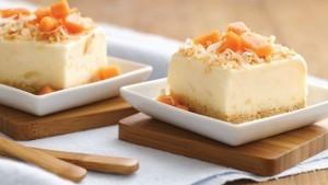 pina-colada-frozen-dessert