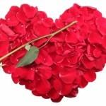 Heart   LatinaOnaMission.com