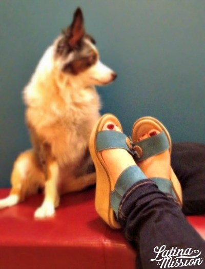 Fauna Earth Shoes, with Shadow, the Australian Shepherd | latinaonamission.com